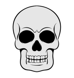 Skull icon icon cartoon vector
