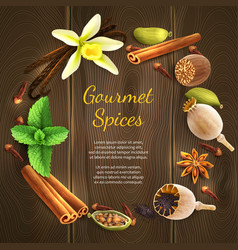 Spices on dark background vector image