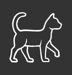 Witch cat chalk icon sorceress pet magic cat vector