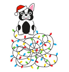 dog bulldog tangled christmas lights greeting card vector image