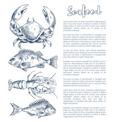 Lobster and crayfish bream or bass seafood poster vector
