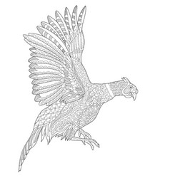 Pheasant or phoenix bird adult coloring page vector
