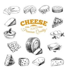 hand drawn with cheeses vector image vector image