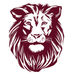 lion hand drawn llustration realistic vector image vector image