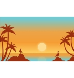 Silhouette of seaside with bird vector image