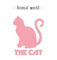 animal world the cat pink cat background im vector image