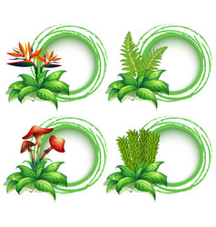 border templates with leaves and flowers vector image