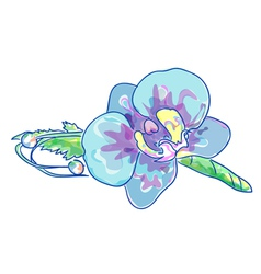 boutonniere with blue orchid vector image