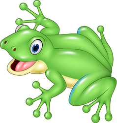 Cute frog isolated on white background vector