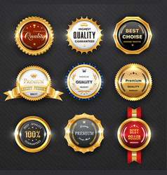 gold badges labels premium quality business vector image