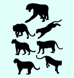 leopards and panthers silhouettes vector image