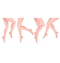 Row of Ladies Legs vector image
