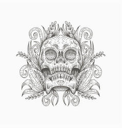 skull decoration vector image