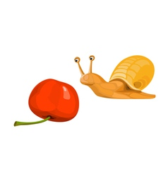 snail with a cherry vector image