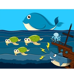 Shark attack ship under the sea vector image