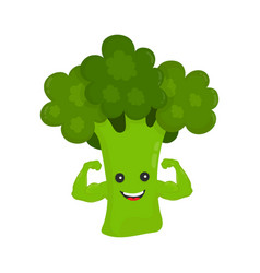 happy smile strong broccoli show biceps vector image
