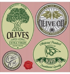 set of templates with olive tree and oil vector image vector image