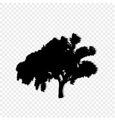 black silhouette of leafed tree isolated on vector image