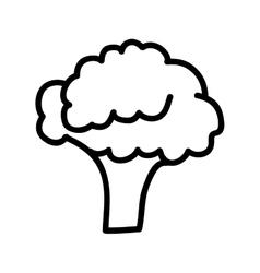 broccoli fresh isolated icon design vector image