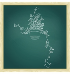 Drawing of green ivy in flowerpot vector