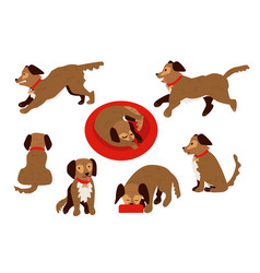 Flat dog animal set vector