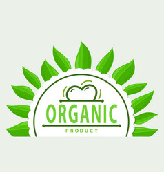 frame green leaves and organic product logo vector image