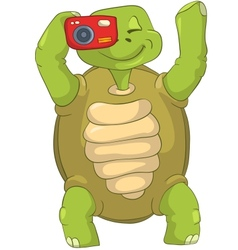 Funny Turtle Tourist - Photographer vector image