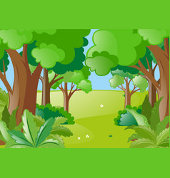 nature scene with green forest vector image
