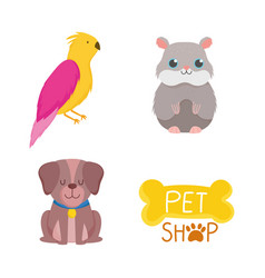 pet shop cute dog hamster bird bone icons cartoon vector image