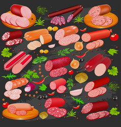 set different kinds sausage and spices vector image