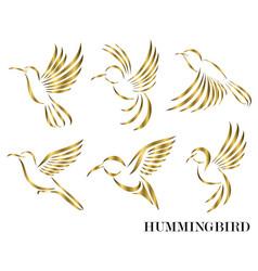 set flying golden hummingbirds line art eps 10 vector image