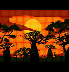 Sunset with landscape baobab trees forest vector
