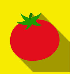 tomato icon flate singe vegetables icon from the vector image