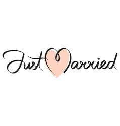 just married hand lettering vector image vector image