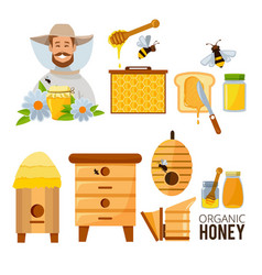 cartoon set of beekeeper beehive vector image