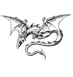 Dragon Akos 1 vector