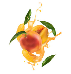 Vn peach with juice vector