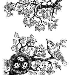Bird and snail black vector image