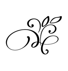 hand drawn flourish calligraphy elements vector image vector image