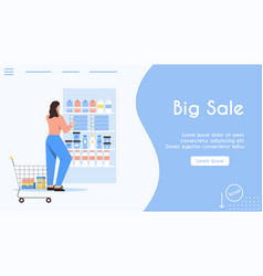 banner big sale at shopping concept vector image
