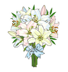 Bouquet bunch of lily flowers tied with ribbon vector