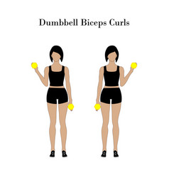 Dumbbell biceps curls exercise vector