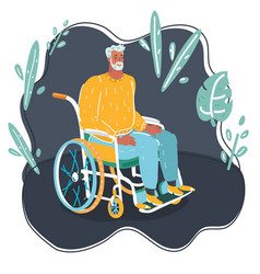 elder grey haired man in wheelchair vector image