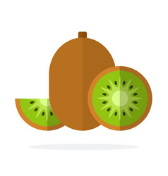 Fruit kiwi half kiwi and wedge kiwi flat vector