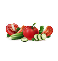 tomatoes cucumber and salad vector image