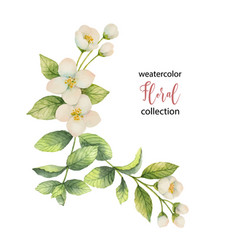 Watercolor wreath flowers and branches vector