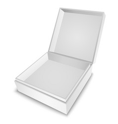 Gift Box White vector image