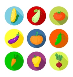 set round icons with vegetables vector image vector image