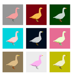 set of in flat style geese vector image