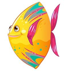 A big colorful fish vector image